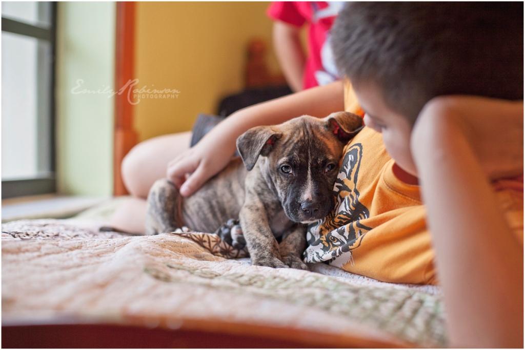 heywang-pup016